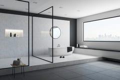 Конкретный интерьер ванной комнаты Стоковое Изображение RF