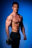Конкурент фитнеса Phisique представляет в студии после разминки в спортзале Стоковые Изображения RF