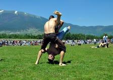 Конкуренция масла wrestling Стоковое Фото
