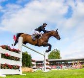 Конкуренция лошади скача стоковые изображения