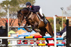 Конноспортивная девушка лошади скачет полет Стоковое Изображение