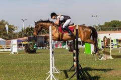 Конноспортивная девушка лошади скачет полет Стоковое Фото