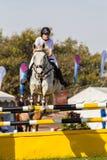 Конноспортивная девушка лошади скачет полет Стоковое Изображение RF