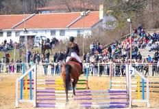 Конноспортивная лошадь конкуренции скача Варна Болгария Стоковое Изображение