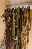 Конноспортивное западное лассо брюк, уздечка, поводок Стоковая Фотография RF