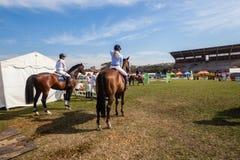 Конноспортивные всадники лошадей арены затем Стоковое фото RF