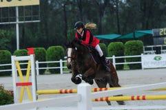 Конноспортивный showjumping - выставка 2013 лошади STC стоковое фото rf