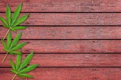 марихуана при высоком давлении