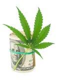 Конопля и деньги Стоковое Фото