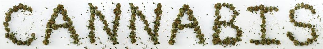 Конопля сказанная по буквам с марихуаной Стоковые Изображения