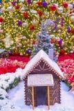 Консерватория гостиницы Bellagio & ботанические сады Стоковое Изображение