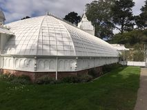Консерватория цветков, Golden Gate Park, Сан-Франциско, 4 Стоковое фото RF