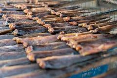 Консервация еды рыб делает ее высушенных ванной солнца стоковые изображения rf