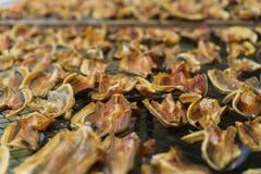 Консервация еды рыб делает ее высушенных ванной солнца стоковое фото rf