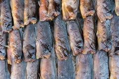 Консервация еды рыб делает ее высушенных ванной солнца стоковое фото
