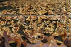 Консервация еды рыб делает ее высушенных ванной солнца стоковые фотографии rf