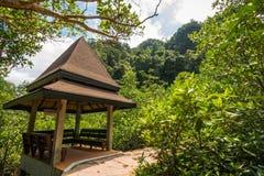 Консервация и турист леса мангровы Nam песни Tha Pom Klong стоковое изображение rf