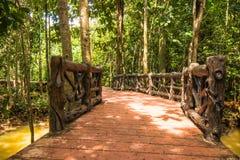 Консервация и турист леса мангровы Nam песни Tha Pom Klong стоковая фотография