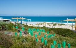 Консервация на пляже города стоковые фотографии rf