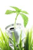 консервация относящая к окружающей среде стоковое изображение rf