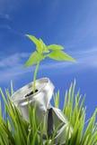 консервация относящая к окружающей среде стоковая фотография