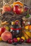 Консервация плодоовощ стоковое изображение