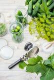Консервация свежих огурцов дома Селективный фокус стоковое изображение