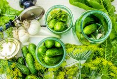 Консервация свежих огурцов дома Селективный фокус стоковые фотографии rf