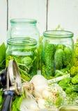 Консервация свежих огурцов дома Селективный фокус стоковая фотография