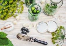 Консервация свежих огурцов дома стоковая фотография