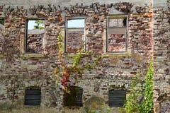 Консервация старых руин стоковое фото