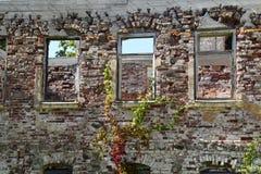 Консервация старых руин стоковое изображение rf