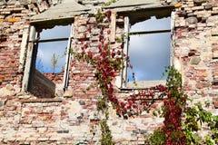 Консервация старых руин стоковое изображение
