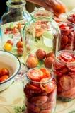 Консервация томатов стоковые изображения rf