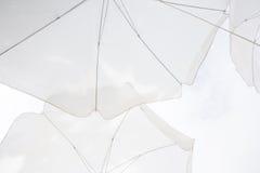 конспект белого зонтика Стоковое Фото