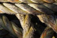 Конспект веревочек Стоковое фото RF