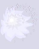 Конспект предпосылки Pione stella бесплатная иллюстрация