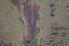 Конспект природы: Шрамы оползней на наклонах каньона адов Стоковое Изображение