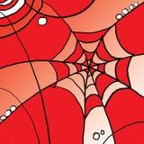 Конспект сети паука Стоковое Изображение