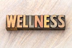 Конспект слова здоровья в винтажном деревянном типе Стоковое Изображение RF