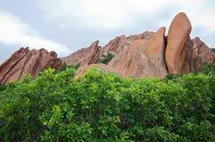 Конспект форм и деревьев утеса Roxborough Стоковая Фотография RF