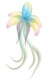 конспект цветет нежное Стоковая Фотография