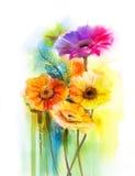 Конспект цветет цветки gerbera маргаритки картины акварели Стоковое Изображение RF