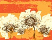 Конспект Wildflowers Стоковое Изображение