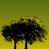 конструируйте зеленый вал Стоковое фото RF
