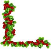 конструируйте mistletoe иллюстрация штока