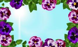 Конструкция искусства цветков стоковые изображения