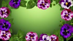 Конструкция искусства цветков стоковые изображения rf