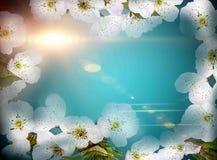 Конструкция искусства цветков стоковое фото rf