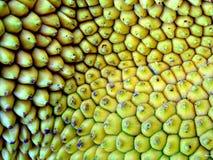 конструкция органическая Стоковое Изображение RF